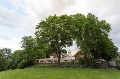 Sobre un colina, el restaurante Herregårdskroe en pleno corazón del parque Forgen.