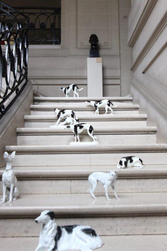 Perros -sueltos- en el Museo.