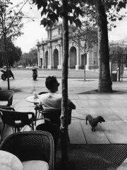 Cappuccino Grand Café Madrid.
