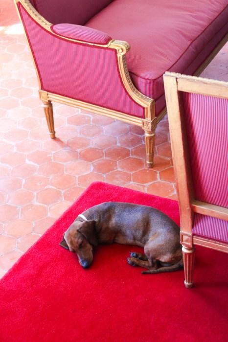 Eros duerme en la suite Pierre Robineau de Beaulieu.