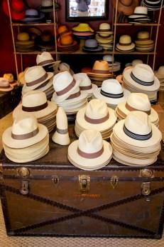 Sombreros Panama.