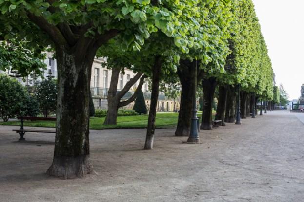 Arboleda del parque Cours Cambronne.