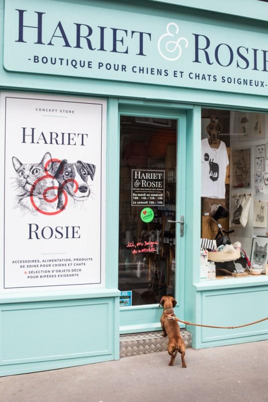 La mejor boutique para mascotas de Nantes.