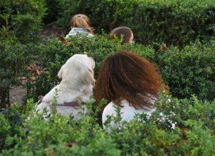Espectadores en los jardines del Palacio de Schönbrunn. Foto: Nuria Cuga.