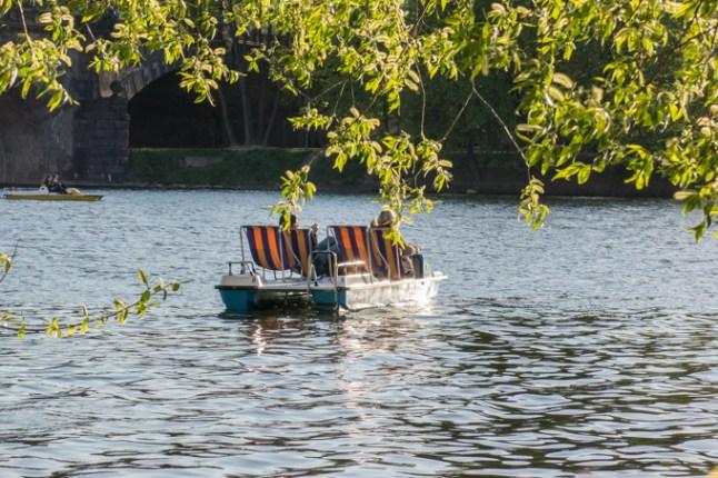 Embarcaciones de alquiler.