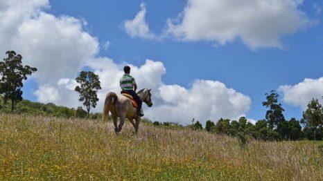 Rutas a caballo por Alentejo.