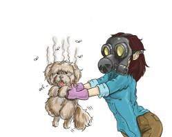 почему собака воняет