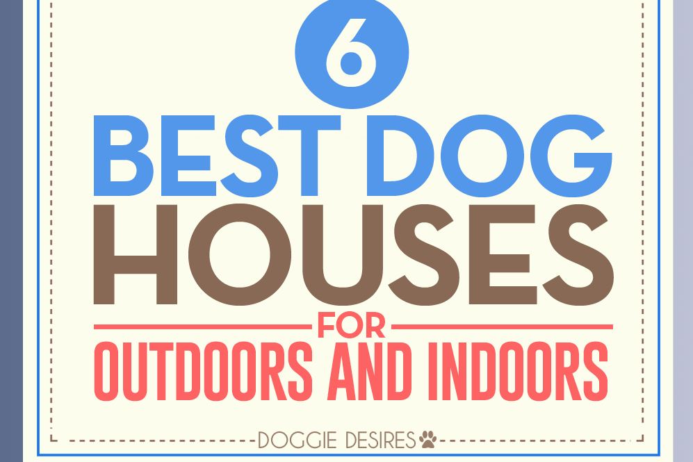 best dog houses