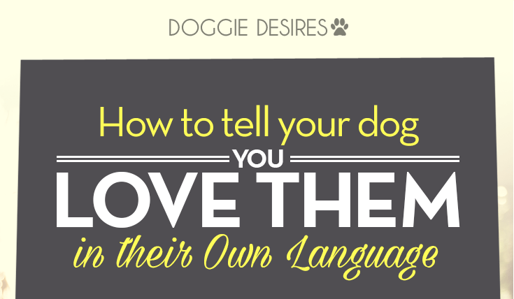 how to tell your dog you love them in their own language