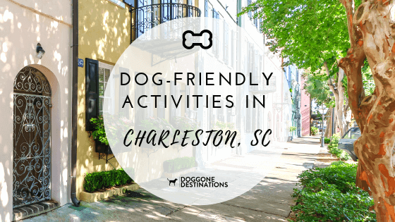 top things to do in charleston