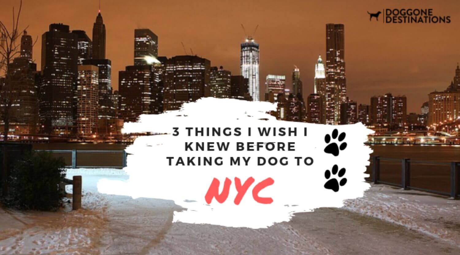 3 Things I Wish I Knew Before Taking My Dog To Nyc
