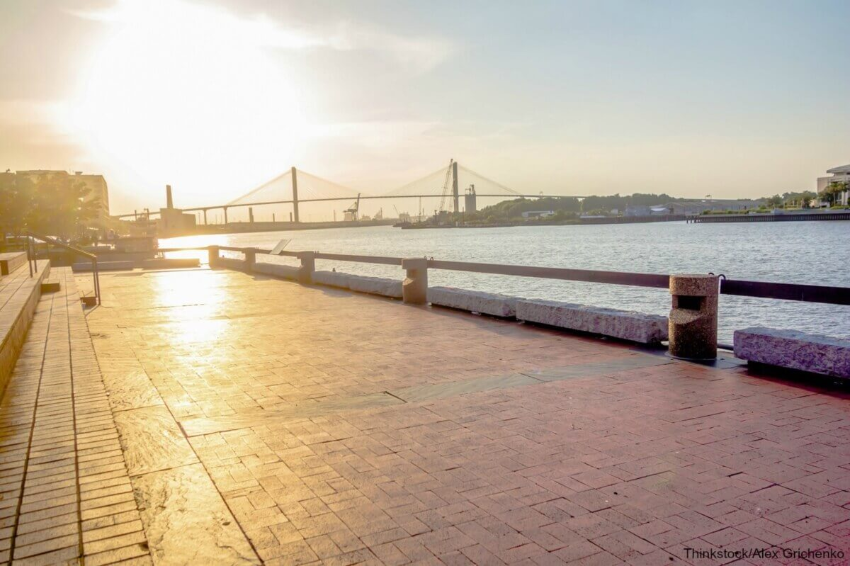 5 of the most fun things to do in dog friendly savannah, gariver street in dog friendly savannah, ga