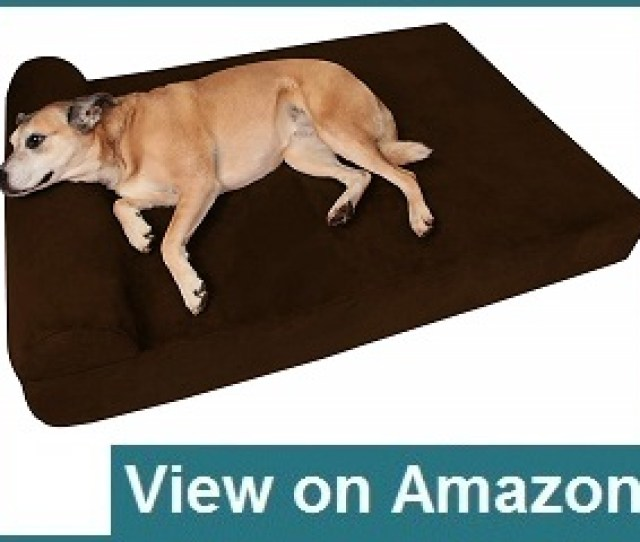 Big Barker Chew Resistant Dog Beds Review