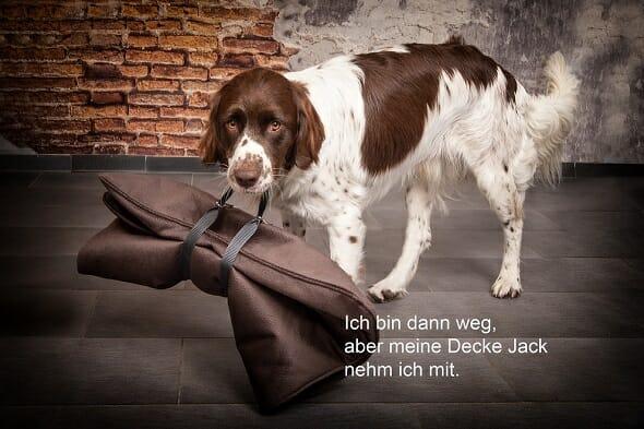 """Anti-Haar Hundedecke """"Jack"""""""