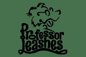 Professor Leashes