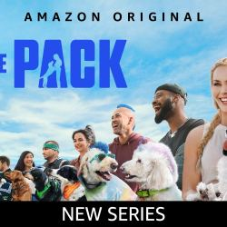 Looking for something watch?   Try Amazon Prime -The Pack