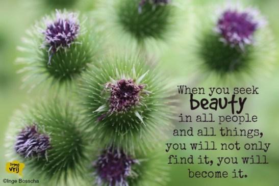 when you seek beauty