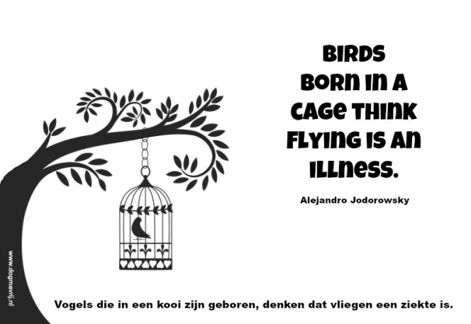 birds born in a cage think flying is an illness