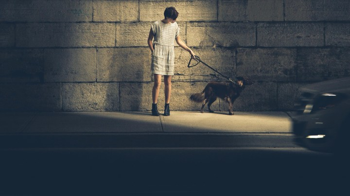 Perro tira correa-dogminancia