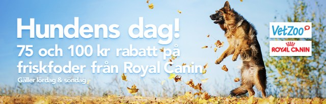 RC Hundens Dag 930x300