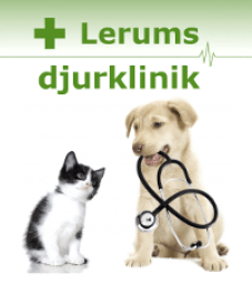lerum-2-rader-text-stor