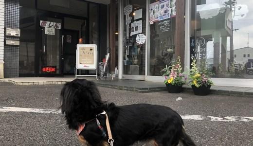 【実体験】愛知県のドッグカフェ「Petco(ペトコ)」レビュー