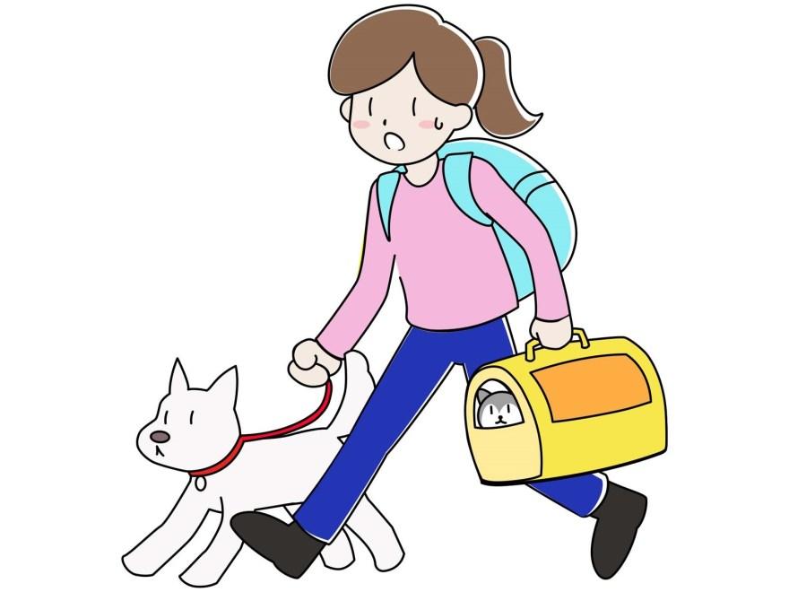 犬の地震への必須準備8個【備えは起こる前にしておきべきです】