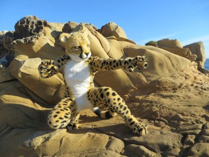From a frequently clicked Dogpatch Press article about highest priced fursuits - $17,500 Primal Visions Cheetah.