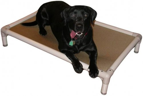 Kuranda Dog Beds