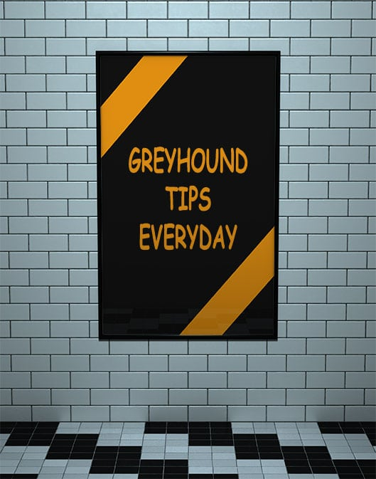 Greyhound Tips Everyday - Home