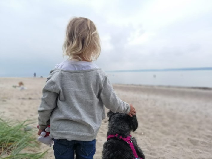 kind und hund dogs-human-friends hundeschule buchenberg