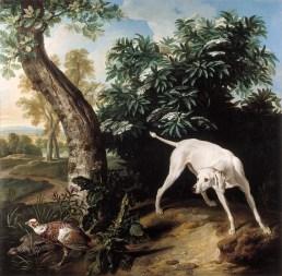 Alexandre-François Desportes, Chienne blanche devant un buisson de sureau