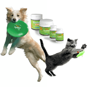 Joint health for Dogs and Cats