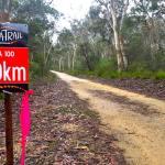 Ultra-Trail_Australia-image