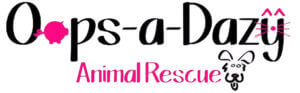 Oops-a-Dazy Animal Rescue