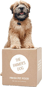 dog on box of dog food brand the Farmers Dog