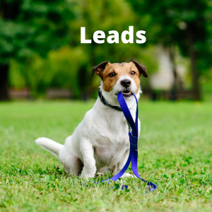 Leads-Harnesses-Connectors