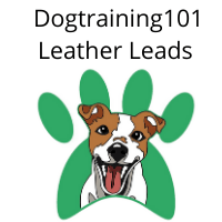 Dogtraining101 Leather leads