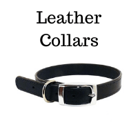 Leather Collars - Dog101 Brand