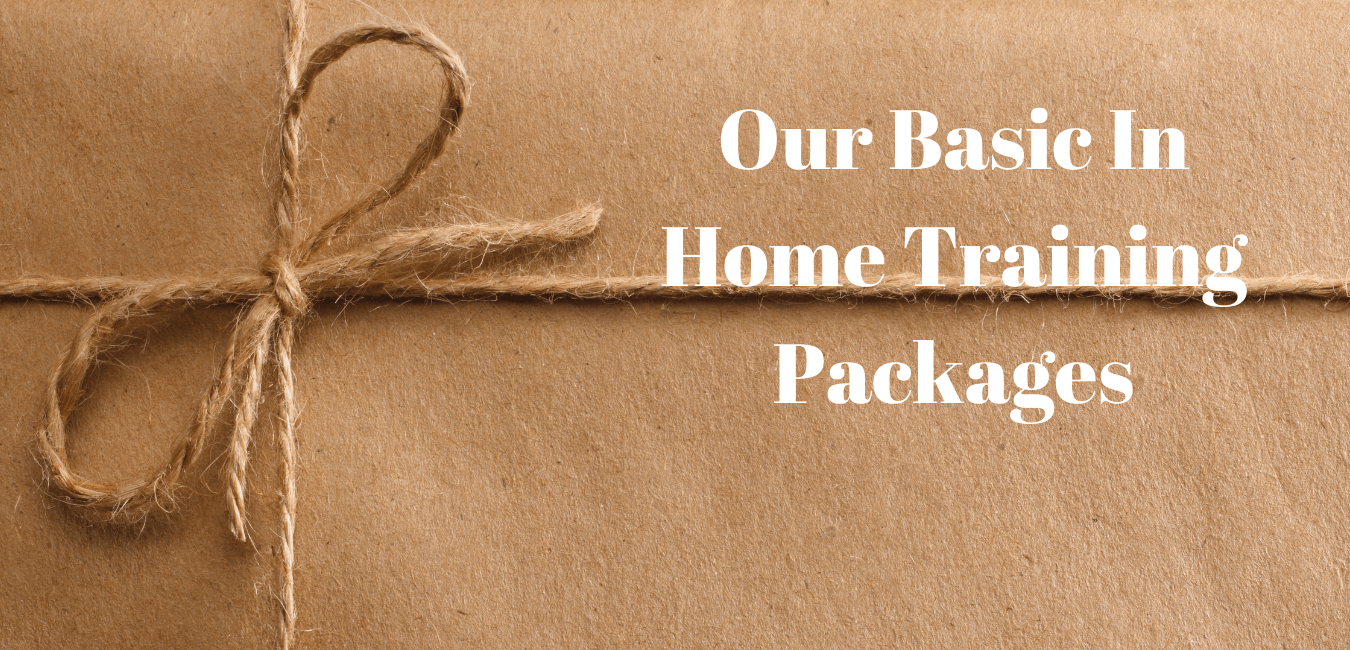 Basic In Home Package