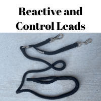 Reactive and Control Leads