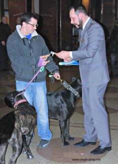 Dog Concierge Pen Hotel NYC
