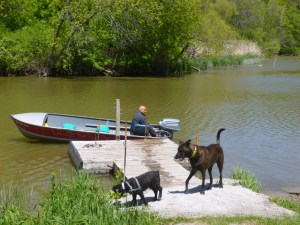 dog dock boat www.dogtrotting..net