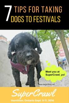 7-tips-for-festivals