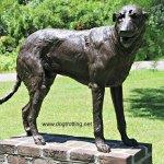 dog sculpture at Brookgreen Gardens Myrtle Beach South Carolina