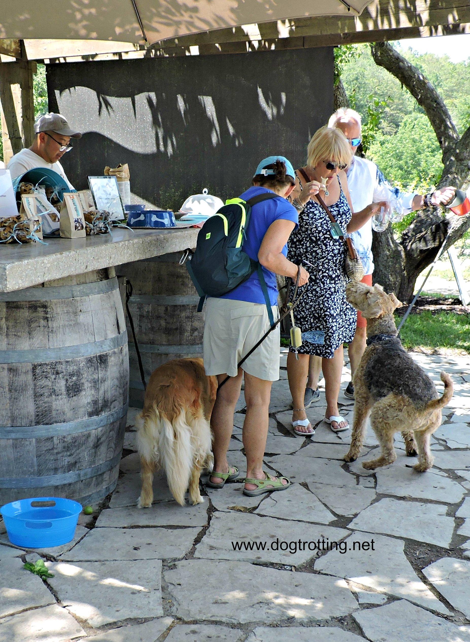 muddy paws wine and dog festival Vineland Ontario dogtrotting.net