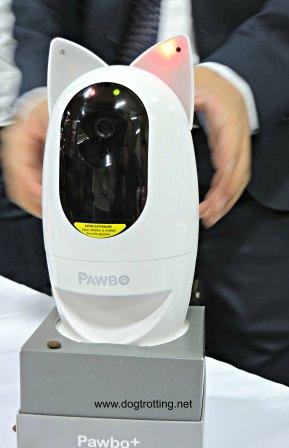 Pawbo pet monitor dogtrotting.net
