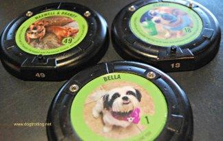 customer buzzers at Fido coffee shop Nashville