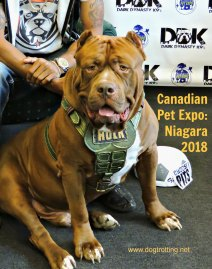 can pet expo niagara 2018