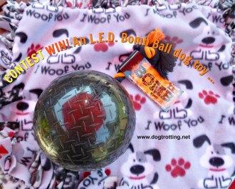 bomb ball contest
